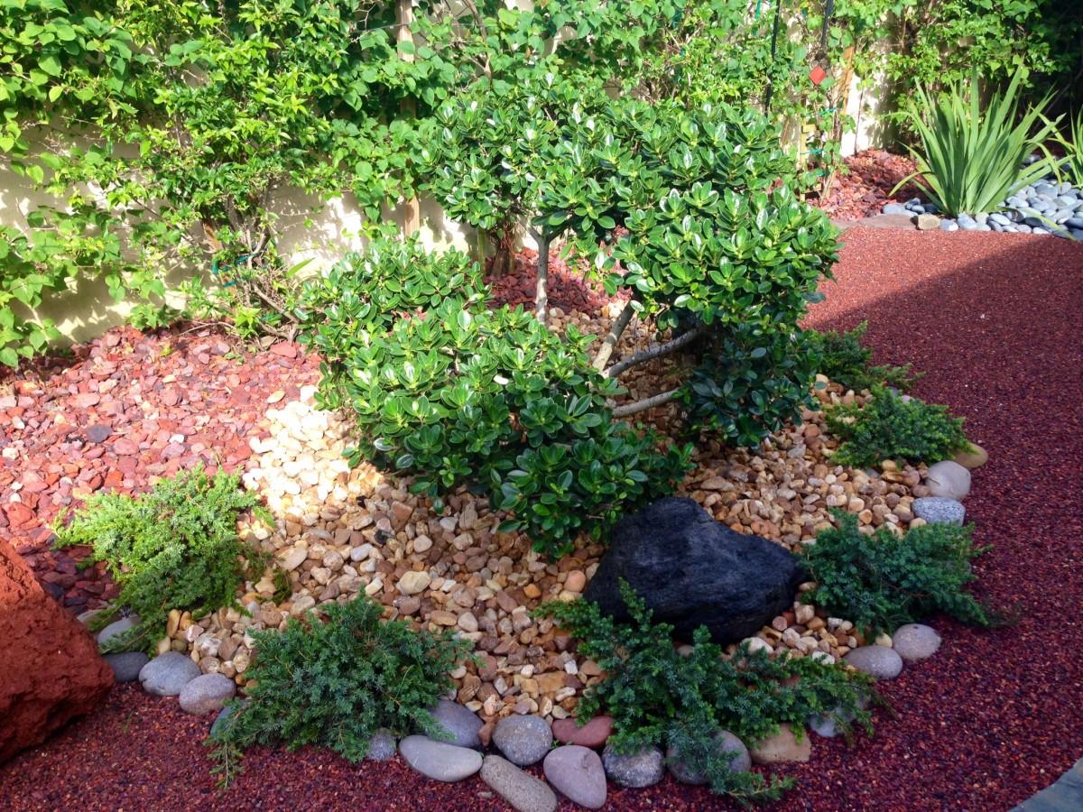Japanese Garden_2_Eileen_G_Designs