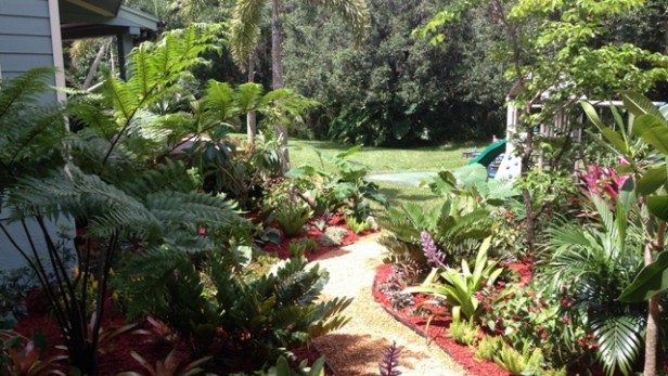 Back Yard Landscape Design